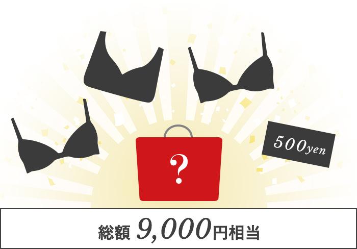 総額 9,000円相当